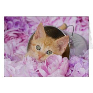オレンジロキの紫色の花柄のブランクNotecard カード