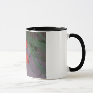 オレンジワスレグサの抽出された写真 マグカップ