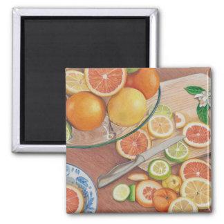 オレンジ切れの表示によって着色される鉛筆のスケッチのプリント マグネット