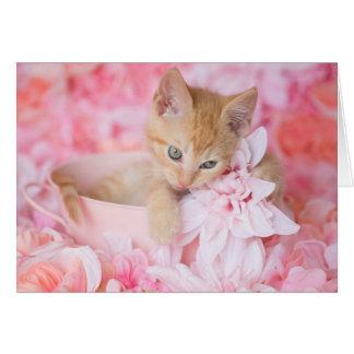 オレンジ子ネコのロキのピンクの花柄のブランクNotecard カード