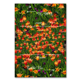 オレンジ庭のテーブルカード カード