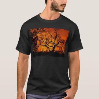 オレンジ日没 Tシャツ