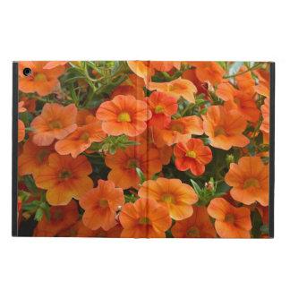 オレンジ春のペチュニアのipadの空気箱