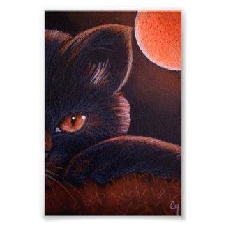 """オレンジ月4""""を持つハロウィン黒猫X 6""""プリント フォトプリント"""
