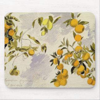 オレンジ木1863年(w/c、ペンとインクの終わるグラファイト マウスパッド