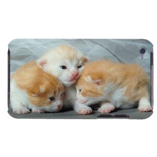オレンジ毛皮の子ネコ Case-Mate iPod TOUCH ケース