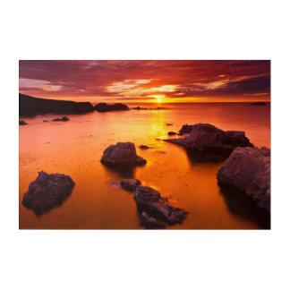 オレンジ海景、日没、カリフォルニア アクリルウォールアート