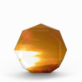 オレンジ渦巻 表彰盾