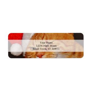オレンジ猫-サンタクロース猫-メリークリスマス ラベル