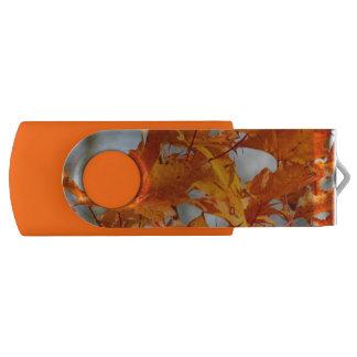オレンジ紅葉USBのフラッシュドライブ USBフラッシュドライブ