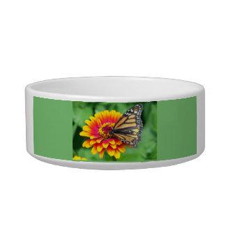 オレンジ花の蝶 ボウル