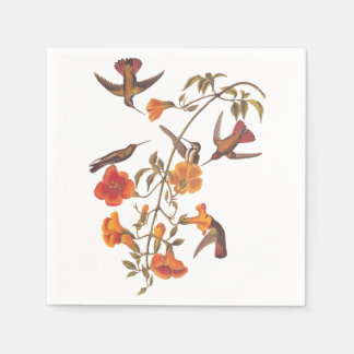 オレンジ花を持つマングローブのハチドリ スタンダードカクテルナプキン