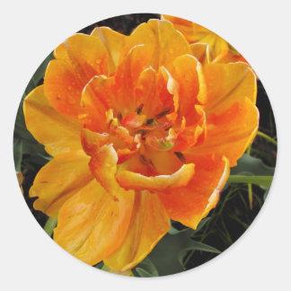オレンジ花 ラウンドシール