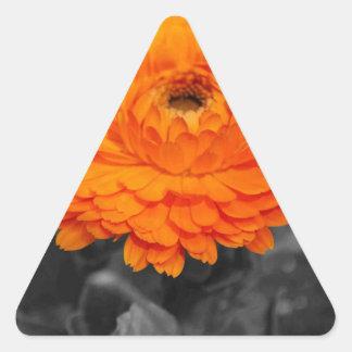 オレンジ花 三角形シール