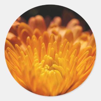オレンジ菊の花の円形のステッカー ラウンドシール
