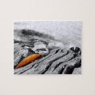 オレンジ葉の写真撮影のパズル ジグソーパズル