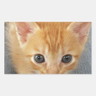 オレンジ虎猫の子ネコ 長方形シール