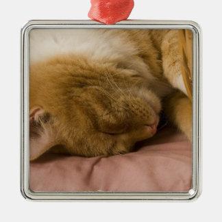 オレンジ虎猫の睡眠 メタルオーナメント
