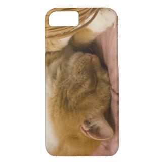 オレンジ虎猫の睡眠 iPhone 8/7ケース