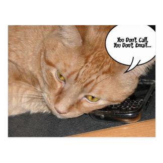 オレンジ虎猫猫のユーモア ポストカード