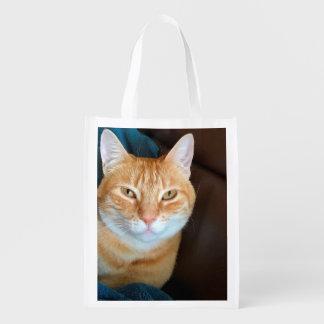 オレンジ虎猫猫 エコバッグ