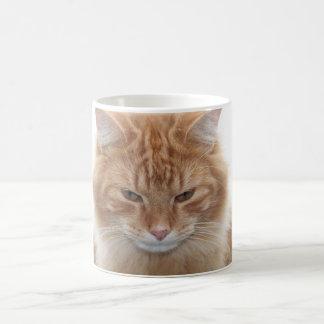 オレンジ虎猫猫 コーヒーマグカップ