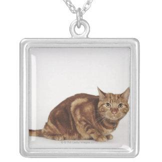 オレンジ虎猫猫 シルバープレートネックレス