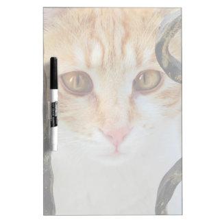 オレンジ虎猫猫 ホワイトボード