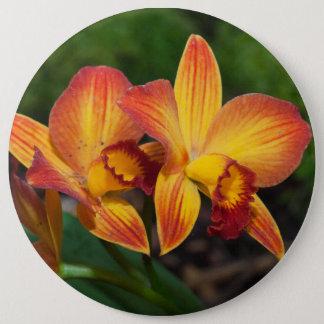オレンジ黄色のRhyncattleantheの豪華な蘭 15.2cm 丸型バッジ