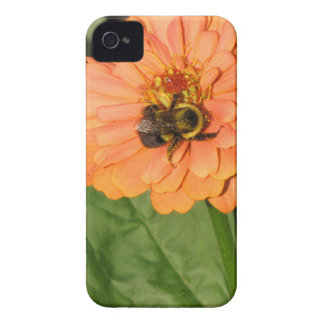 オレンジ《植物》百日草ののまわりに Case-Mate iPhone 4 ケース