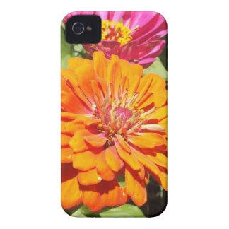 オレンジ《植物》百日草のブラックベリーのはっきりしたな箱 Case-Mate iPhone 4 ケース