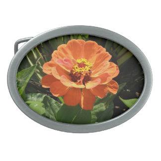 オレンジ《植物》百日草のベルトの留め金 卵形バックル