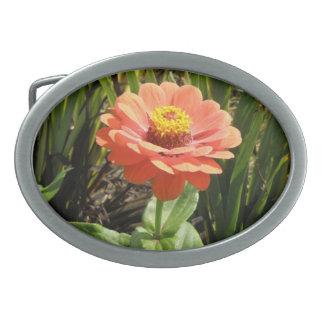 オレンジ《植物》百日草の花のベルトの留め金 卵形バックル