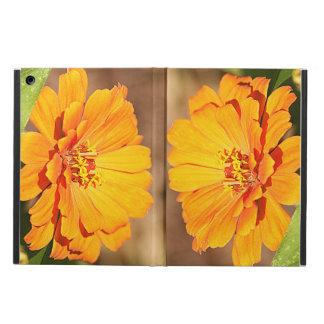 オレンジ《植物》百日草の花