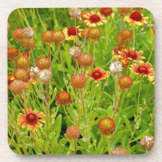 オレンジechinaceaの花園のプリント コースター