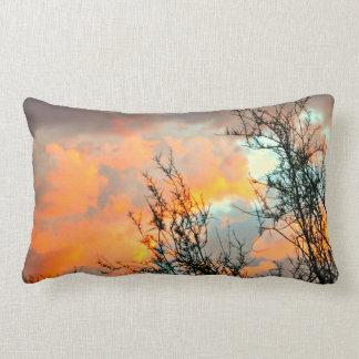 オレンジSonoranの空の装飾用クッション ランバークッション