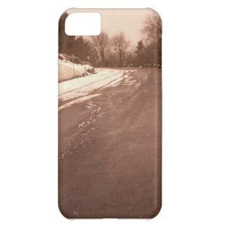 オンドリの石 iPhone5Cケース