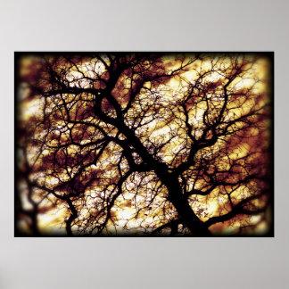オークの木 ポスター