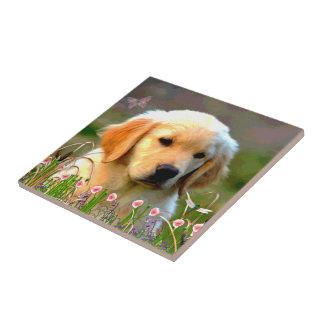 オースティンの金ラブラドールの子犬 タイル
