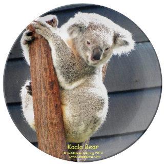 オーストラリアのコアラ 磁器プレート