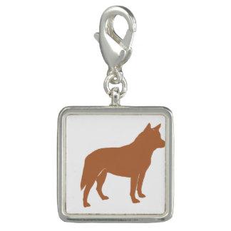 オーストラリアの牛犬のサイロred.png チャーム