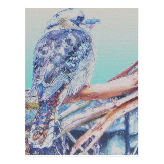 オーストラリア人Kookaburra ポストカード