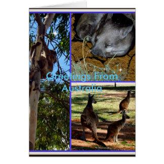 オーストラリア動物のコラージュ、誕生日の挨拶状 カード