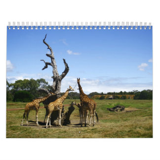 オーストラリア2012のカレンダー カレンダー