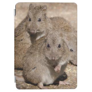 オーストラリア、アデレード。 Clelandの野性生物公園 iPad Air カバー