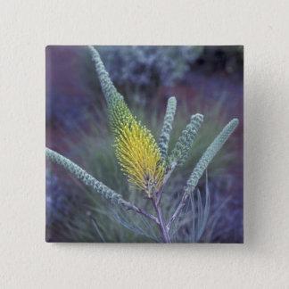 オーストラリア、Ayersの石の近くのNT。 春の開花 5.1cm 正方形バッジ