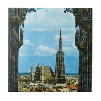 オーストリア、ウィーン、セントスチーブンのカテドラル タイル