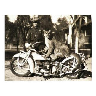オートバイのピューマの警官のヴィンテージの写真 ポストカード