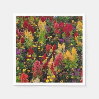 オーランドフロリダの鮮やかな夏の花園 スタンダードカクテルナプキン