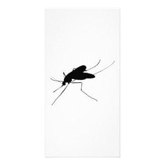 カのシルエットの迷惑の昆虫か虫の害虫 カード